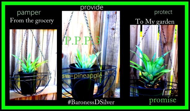 pinapple trilogy